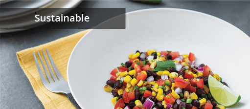 Commercial Sustainable Dinnerware